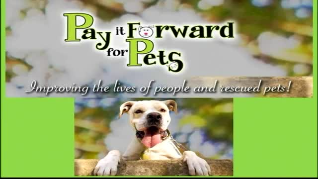 Pay it Forward for Pets #44